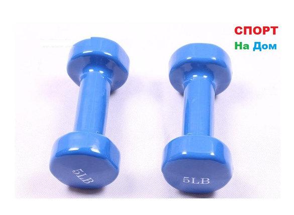 Фитнес гантели (пара, цветные) неопреновые 5LB, фото 2