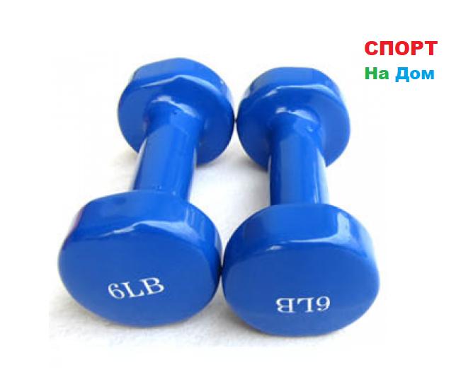 Фитнес гантели (пара, цветные) неопреновые 6LB