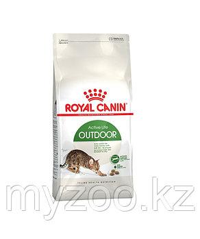 Корм для кошек гуляющих на улице Royal Canin OUTDOOR 10kg