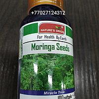 Капсулы Семена Моринги - Moringa Seeds