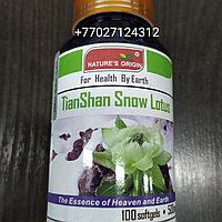 Капсулы Тяньшанский снежный лотос - TianShan Snow Lotus