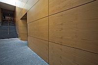 Стеновые панели из шпона, фото 1