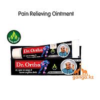 Доктор Орто аюрведическая обезболивающая мазь (Dr Ortho Ayurvedic Pain Relieving Ointment), 30 гр.