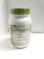 Гилой (Гудучи) чурна, 100 гр, Сангам, Giloy (Guduchi) churnam