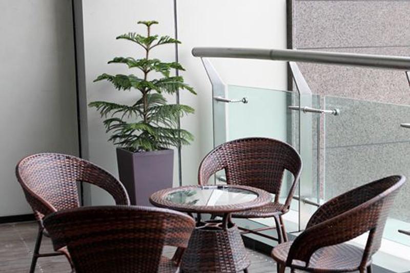 Озеленение помещения в офисе