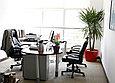 Озеленение офисов, фото 6