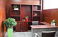 Озеленение офисов, фото 7