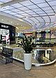 Озеленение торговых центров, фото 5