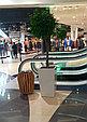 Озеленение торговых центров, фото 8