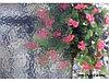 Рельефная витражная пленка Clear Corella 005