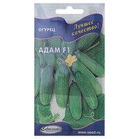 Семена Огурец 'Адам' F1 Дом семян, раннеспелый, партенокарпический, 6 шт (комплект из 10 шт.)