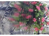 Рельефная витражная пленка Clear Barnwood 012