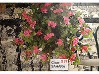 Рельефная витражная пленка Clear Sahara 017