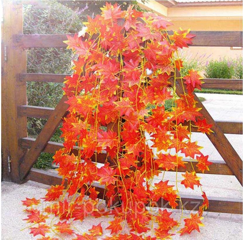 Гирлянда кленовые листья плющ (искусственная) 5 веток