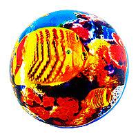 Детский резиновый мячик 23 см