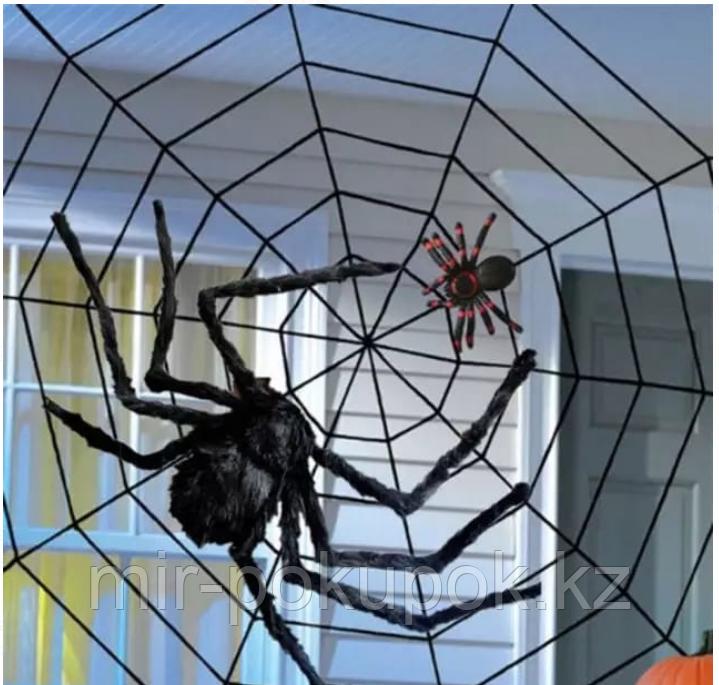 Декоративная большая паутина на Хэллоуин круглая (белая и черная), 50 см