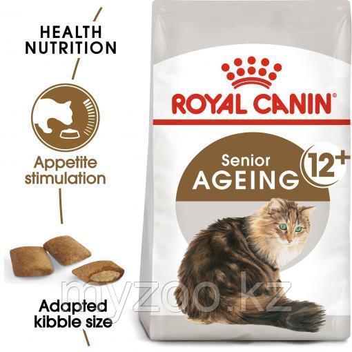 Royal Canin AGEING +12, 2 kg   Корм для пожилых кошек старше 12 лет  
