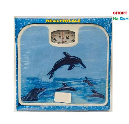 Весы напольные механические Health Scale (цвет голубой с дельфинами), фото 2