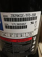 ZB29KQETFD558, фото 1