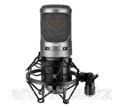 Студийный конденсаторный микрофон Takstar SM-7B
