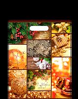 "Пакет (мешок) проруб. ПВД 40х30см, 60мкм, ""Счастливого Рождества"", 25 шт"
