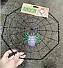 """Паутина"" с пауком (декорации на Хэллоуин), 30 см, фото 2"
