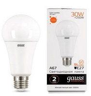 Лампа Gauss Elementary LED A67 30W E27 6500K 1/10/100