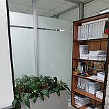 Обслуживание офисов по уходу за комнатными цветами, фото 2
