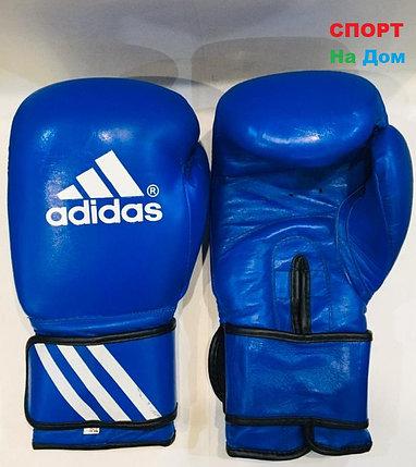 Перчатки для бокса и единоборств Adidas 10-OZ кожа (цвет синий), фото 2