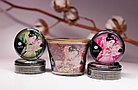 Массажное аромамасло-свеча Shunga, с ароматом клубники и шампанского, 170 мл, фото 3