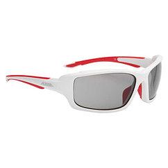 Alpina  очки Callum VL