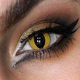 Карнавальные линзы Magic eye, фото 2