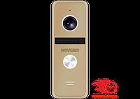 FANTASY HD GOLD вызывная панель 1.3 Mpix с ИК подсветкой