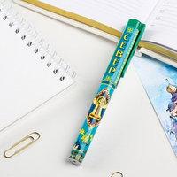 Ручка сувенирная 'Север'