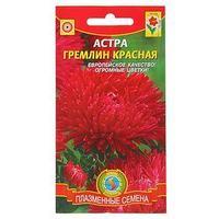 Семена цветов Астра 'Гремлин' красная, О, 0,2 г (комплект из 10 шт.)