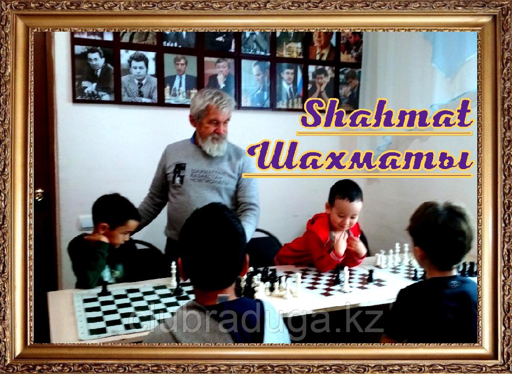 Шахматная группа от 8000т/месяц