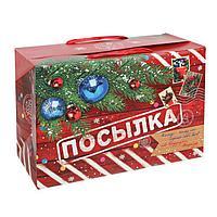 Пакет коробка «Новогодняя посылка», 28 × 20 × 13 см