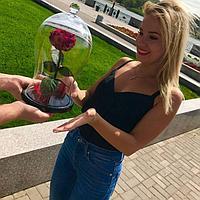 Роза в изогнутой колбе бордовая 33 см.
