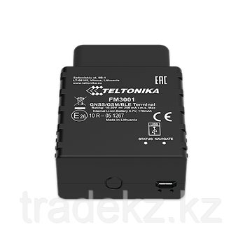 GPS/ГЛОНАСС трекер Teltonika FM3001 (3G OBD), фото 2