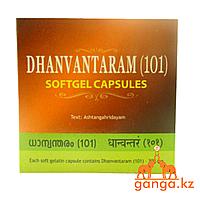 Дханвантарам 101 капсулированное масло (Dhanwantaram 101, ARYA VAIDYA SALA), 100 кап.