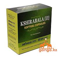 Кширабала (101) от преждевременного старения организма (Kshirabala (101) ARYA VAIDYA SALA), 100 кап.