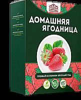 Домашняя ягодница - клубника