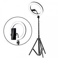 Кольцевая лампа 30 см на штативе с зажимом для телефона с пультом, фото 1