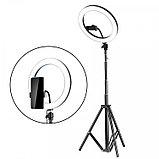 Кольцевая светодиодная селфи лампа 45см с держателем для смартфона, фото 2