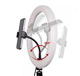 Кольцевая светодиодная селфи лампа 45см с держателем для смартфона, фото 3