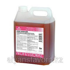 Cooky Degreaser- моющее средство для пароконвектоматов с режимом автоматической очистки.5 литров РФ