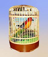 Птичка в клетке, со звуком и движениями., фото 1