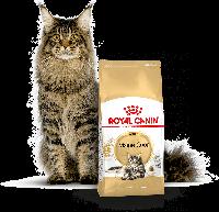 Корм для кошер породы Мейн Кун Royal Canin MAINE COON 31 4kg