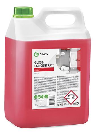 Концентрированное чистящее средство Gloss Concentrate, фото 2