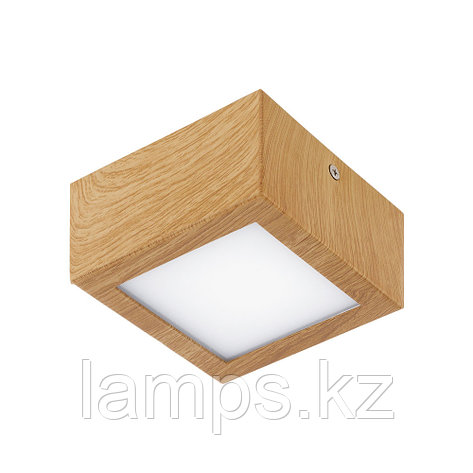 Спот COLEGIO  LED/1*4.2W , фото 2